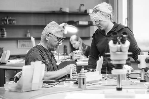 Zahntechnikermeister begutachtet mit seiner Zahntechnikerin eine Arbeit
